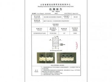 IMS混凝土复合切块墙体自保温系统检测报告 (1)
